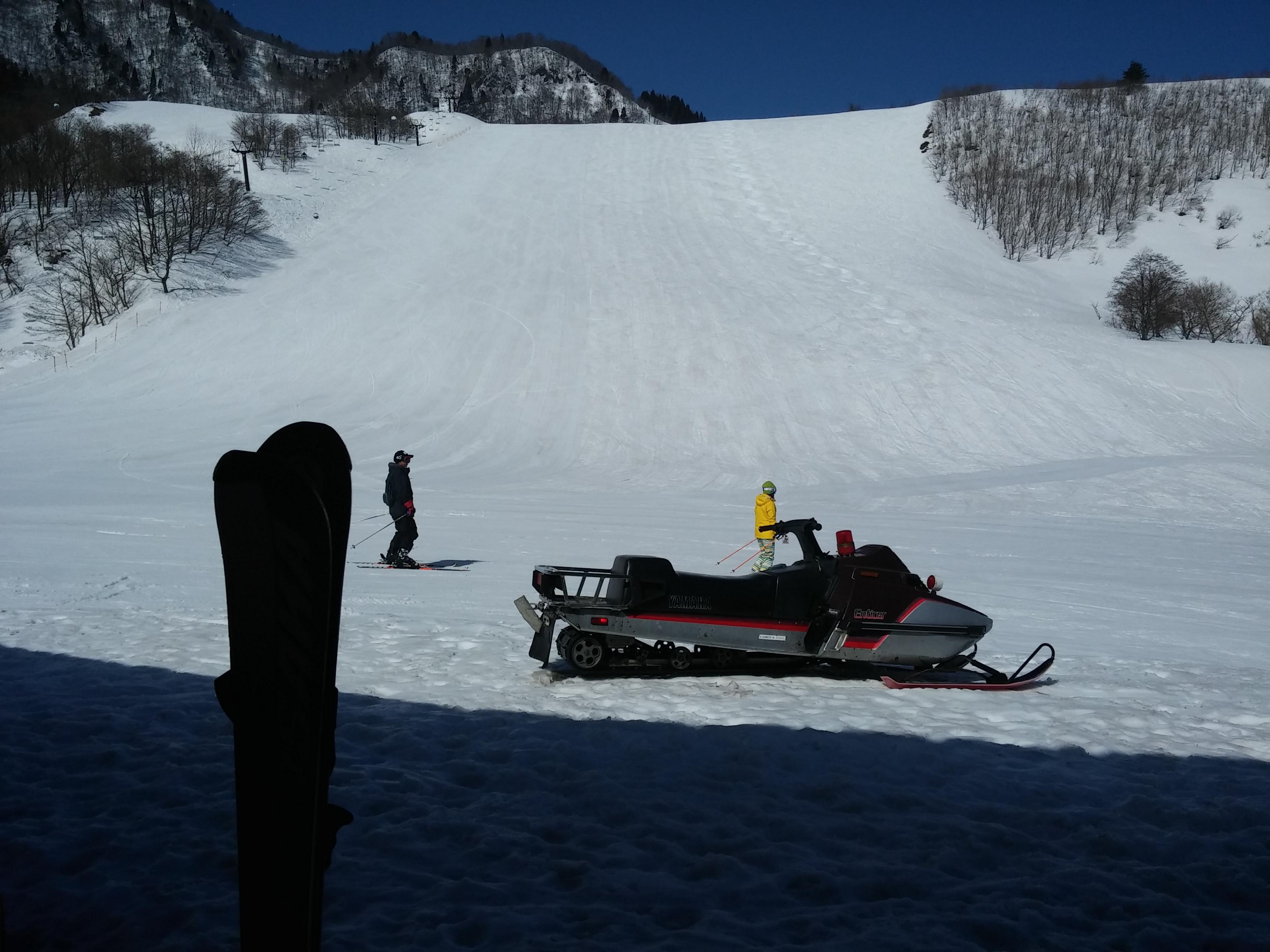 国際 場 氷ノ山 スキー